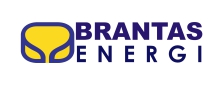 Project Reference Logo Brantas