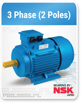 3 phase 3000 Rpm (2 Poles)