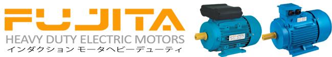 Fujita Electric Motor