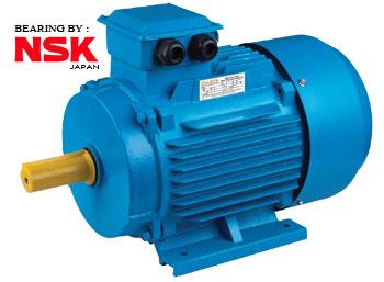 Fujita Y2 electric motor 3 phase